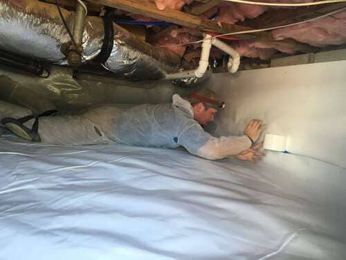 attic mold guy