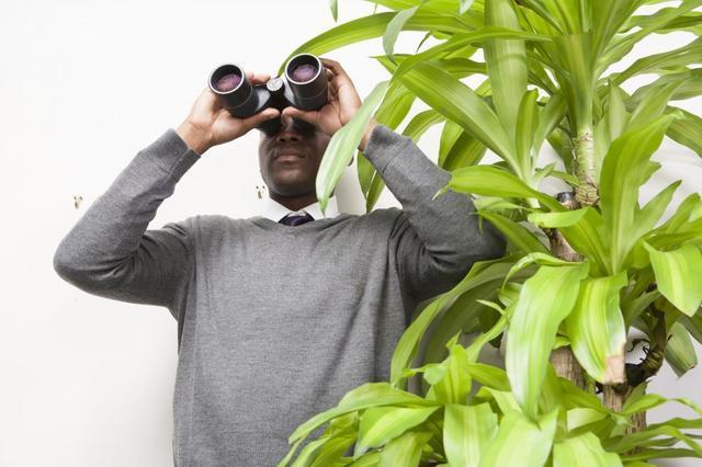 Detecting air leaks